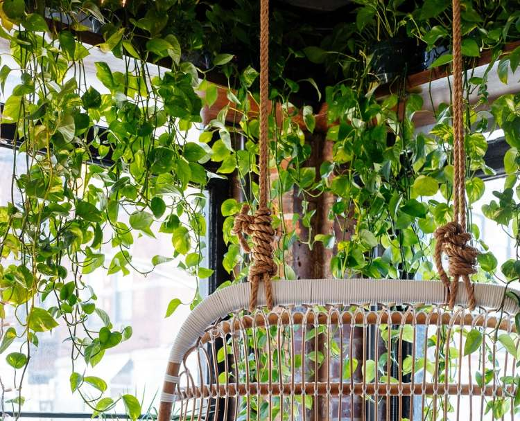 best-artificial-leaves-for-decoration
