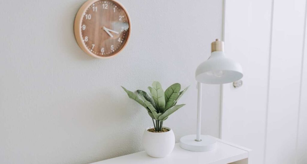 Decorative Pots for Plants for Home Indoors